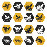 Set of bees. Collection with silhouettes of bees on honeycomb background vector illustration