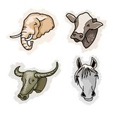 A Set of Benefit Animal on Corlors Background Royalty Free Stock Image