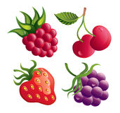 Set of berries Royalty Free Stock Images