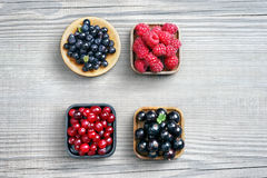 Set of berries: bilberry, raspberry, cranberry and currant. Royalty Free Stock Images