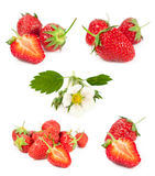 Set of berries and flowers of strawberry Royalty Free Stock Photos