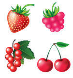 Set of berries objects Royalty Free Stock Photography