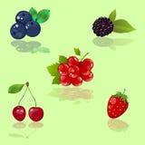 Set of  berries. Set of realistic  berries Stock Image