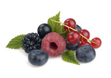 Set of berries Royalty Free Stock Photo