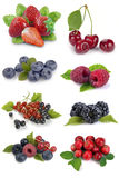 Set of berries Stock Photography
