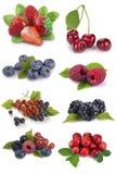 Set of berries Stock Photography