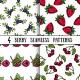 Set Berry Patterns Stock Image