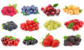 Set of berry Royalty Free Stock Image