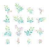 Set Betriebselemente Blumensträuße, Ausrüstungen, Verzierungen Stockbilder