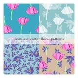 Set bezszwowi wektorów wzory z kwiatami ilustracji