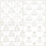Set bezszwowi wzory z Australijskimi florami royalty ilustracja