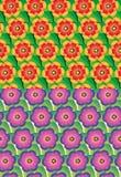 Set bezszwowy kwiatu wzór Obrazy Royalty Free