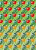 Set bezszwowy wektorowy jabłko Obrazy Stock