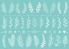 Set biała ręka rysujący kwiaty i gałąź ilustracji