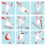 Set biały niedźwiedź bawić się zima sport. Humorystyczna bolączka Ilustracja Wektor