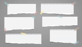 Set biel rozdzierał prążkowanego notatnika papier, drzejący nutowi papierowi paski wtykający na popielatym tle również zwrócić co ilustracji