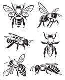 Set Bienen Stockfotografie