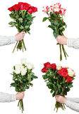 Set of big bunches various rose flowers in hands Stock Images