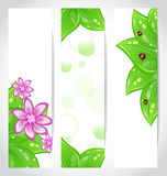 Set of bio concept design eco friendly banners Stock Photo