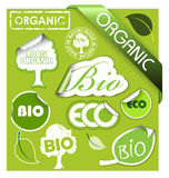 Set of bio, eco, organic elements. Labels, stickers, stamps, ribbons Stock Photography