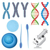 Set of biology objects. Royalty Free Stock Photography