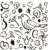 Set bird and berry stock illustration