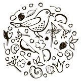 Set bird and berry vector illustration