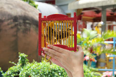 Set a bird free (for merit).Beliefs of Buddhism Stock Images