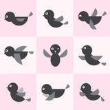 Set of  bird icons. On pink background Royalty Free Stock Photo