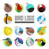 Set of Bird Logo Vector Illustration Stock Images