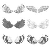 Set of bird wings Stock Images