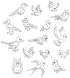Set of birds. Black and white vector illustrations of different birdies drawn in cartoon style including several species Stock Images
