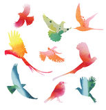 Set of  birds in flight. Watercolor silhouettes Royalty Free Stock Image