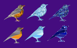 Set of birds in polygon style. Complicated and simple: bird from nature thrush, ice bird and bird made of constellation. Isolated illustration can be used in Stock Photography