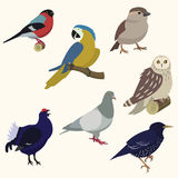 Set of birds. Vector illustration Stock Photography