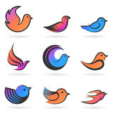 Set of Birds.Vector illustration Stock Image
