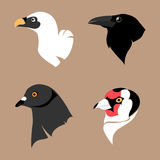 Set of birds. Vector Illustration Stock Images