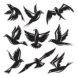 Set of birds. Vector set of birds silhouettes Royalty Free Stock Image