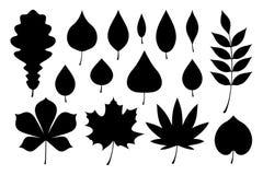Set of black autumn leaves. Flat style. isolated on white background vector illustration