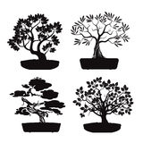 Set of Black Bonsai Trees. Royalty Free Stock Photography