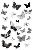 Set of black butterflies Stock Photos