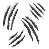 Set of black claw scratches isolated on white background. Vector illustration Royalty Free Stock Image