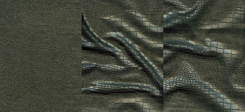 Set of black crocodile leather texture Stock Images