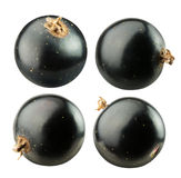 Set of black currants isolated on white Royalty Free Stock Photo