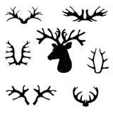 Set of black deer antlers on white backrtoun Stock Image