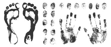 Set of Black Fingerprints on White Background. Set of a print a human finger handprint and footprint. Black ink fingerprints on white background in vector Royalty Free Stock Images