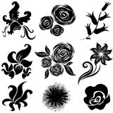 Set of black flower design elements Stock Images