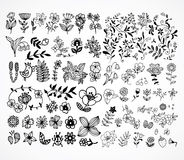 Set of black flower design elements Stock Photo