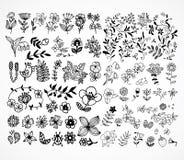 Set of black flower design elements Stock Photo