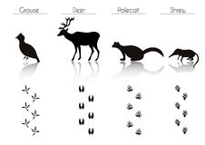 Set of Black Forest Animals and Birds Silhouettes: Grouse, Deer, Royalty Free Stock Image